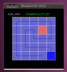 bloudirint2