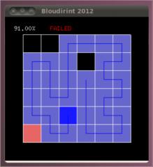 bloudirint3
