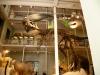 Skotské národní muzeum